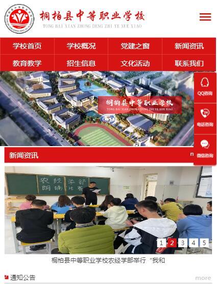 郑州网站建设案例--桐柏职高